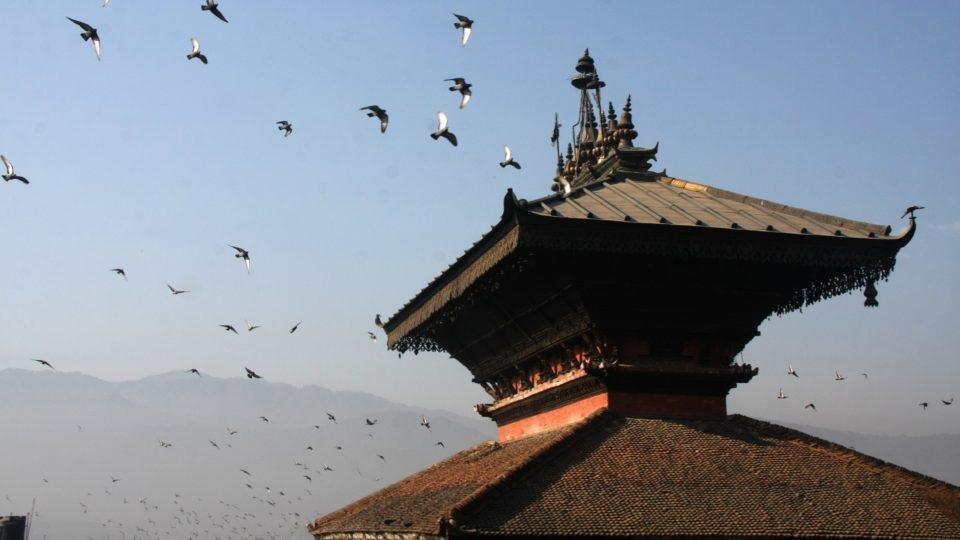 nepal_1H x W: